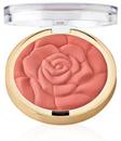 rose-powder-blushs-png