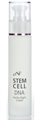 CNC Stem Cell Dna Herba Night Cream