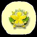 Ilzsu