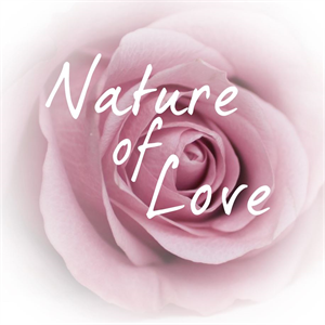 Nature of Love Beauty Hair