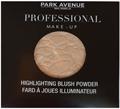 Park Avenue Professional Highlighter