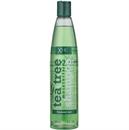 xpel-hair-care-xhc-tea-tree-moisturising-shampoo-frequent-uses9-png