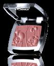 Astor Pure Color Perfect Blush Arcpirosító