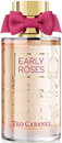 teo-cabanel-early-rosess9-png