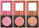 bh-cosmetics-floral-blush---duo-cheek-color1s9-png