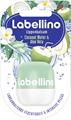 Labellino Coconut Water & Aloe Vera Ajakápoló
