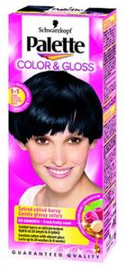Palette Color & Gloss Hajszínező