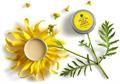 Manna Natúr Kozmetikum Spice Up Your Senses Krémparfüm