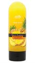 joanna-fruit-fantasy-hawaii-ananasz-testradir-png