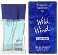 Gabriela Sabatini Wild Wind for Men