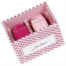 lancome-macaron-blush-and-blenders9-png