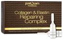 collagen-and-elastin-complex-12-darab-fiola-regeneralo-szerummals-png