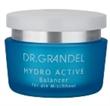 Dr.Grandel Hydro Active Balancer