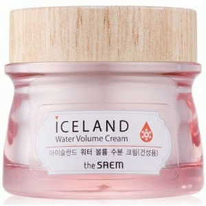 The Saem Iceland Water Volume Cream For Dry Skin