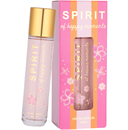 spirit-of-happy-momentss9-png