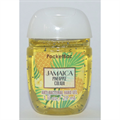 Bath & Body Works Pocketbac Jamaica Pinapple Colada Anti-Bacterial Hand Gel