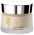 Deynique Aloe Vera Synergie Collagen Night Cream