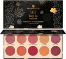 essence-fall-back-to-nature-highlighter-blush-palettes9-png