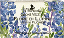 florinda-szappan-flowers-flowers---csillagfurt-100gs9-png