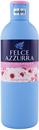felce-azzurra-fiori-di-sakuras9-png