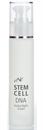 CNC Stem Cell Dna Herba Night Cream