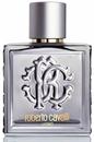 roberto-cavalli-uomo-silver-essence-edt1s9-png