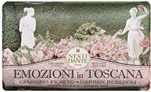 Nesti Dante Emozioni In Toscana - Garden In Bloom