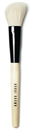 angled-face-brush1s-png