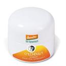 Martina Gebhardt Naturkosmetik Calendula Cream