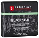 erborian-black-magic-arctisztito-szappan1s9-png