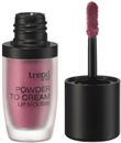 trend-it-up-cream-to-powder-ajakruzss9-png