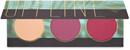 zoeva-offline-blush-palettas9-png