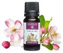 cseresznyevirag-termesztes-illatositos9-png