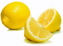 humanity-citrom-illoolaj1s-png