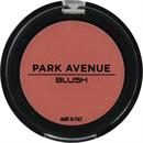 park-avenue-arcpirositos-jpg