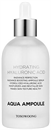 tosowoong-hydrating-hyaluronic-acid-aqua-ampoules9-png