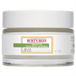 Burt's Bees Sensitive Night Creme With Cotton Extract