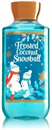 bath-body-works-frosted-coconut-snowball-shower-gels9-png