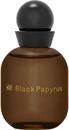 h-m-black-papyrus-edps9-png