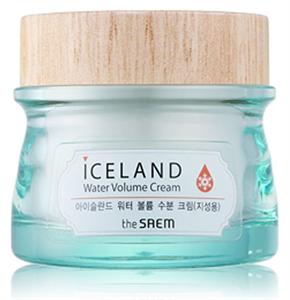 The Saem Iceland Water Volume Cream For Oily Skin