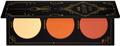Zoeva Aristo Blush Palette