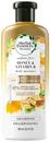 honey-vitamin-b-sulfate-free-shampoos9-png