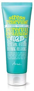 Ariul Stress Relieving Purefull Cleansing Foam