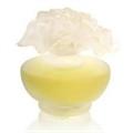 Pupa Bouquet De Parfums Vert Printemps EDP