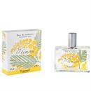 fragonard-mimosa-edt-jpg
