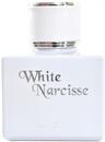 kelsey-berwin-white-narcisses9-png