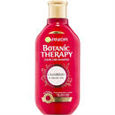 Garnier Botanic Therapy Cranberry & Argan Oil Sampon