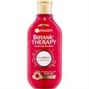 garnier-botanic-therapy-cranberry-argan-oil-sampons-jpg