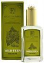 wild-ferns9-png