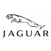 Jaguar termékek  10562b8d99